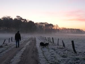 Wolfgang und Hunde
