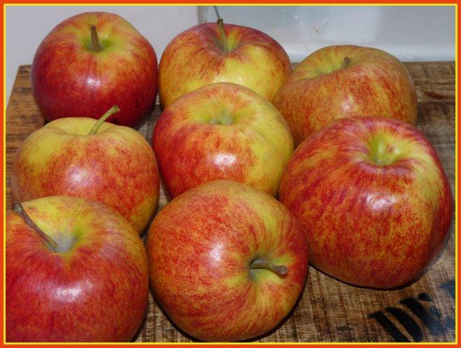 ÄpfelR