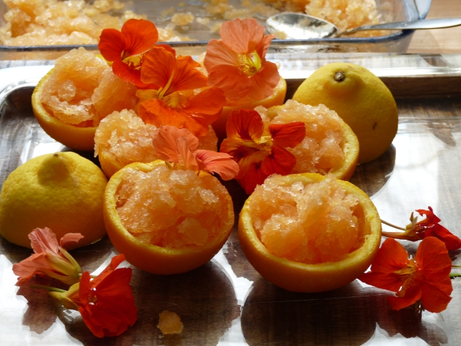 Orangen mit Sorbet