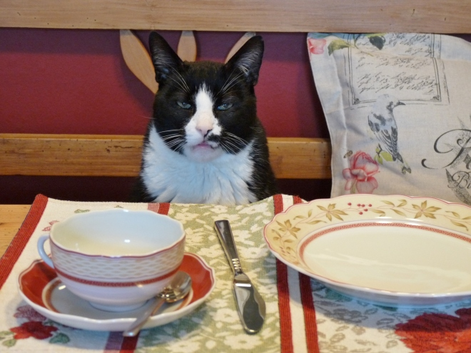 Sam am Frühstückstisch