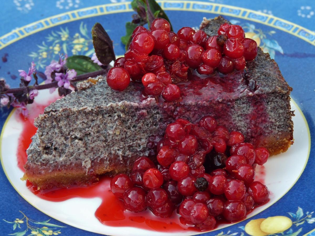 Mohn-Sucht: Joghurt-Mohn-Torte