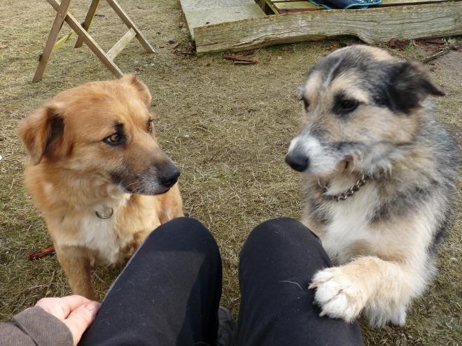 Greta und Hazel