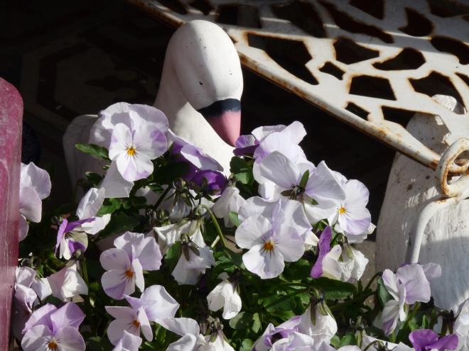 Blumen mit Gans